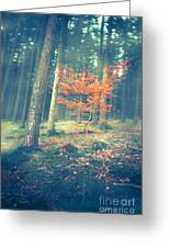 The Little Red Tree - Vintage Greeting Card by Hannes Cmarits