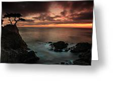 The Lone Cypress Observes A Pebble Beach Sunset Greeting Card by Dave Storym