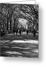 The Mall At Central Park Greeting Card by Rob Hans