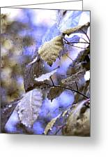 The Melody Of The Silver Rain Greeting Card by Jenny Rainbow
