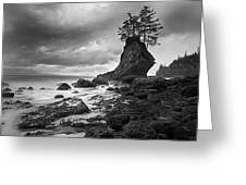 The Old Man Of The Sea - Strait Of Juan De Fuca Greeting Card by Nathan Mccreery