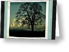 The Old Oak Greeting Card by Bonnie Bruno
