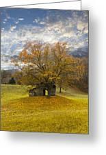 The Old Oak Tree Greeting Card by Debra and Dave Vanderlaan