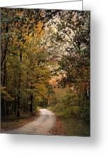 The Path Less Traveled 2 Greeting Card by Jai Johnson