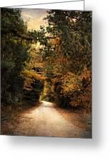 The Path Less Traveled Greeting Card by Jai Johnson