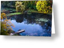 The Pond 2 Greeting Card by Kathleen A McDermott