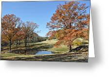 The Pond Greeting Card by Denise Ellis