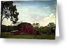 The Red Barn Greeting Card by Elizabeth Wilson