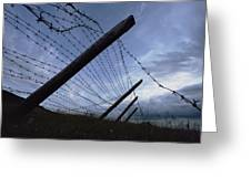 The Remains Of A Barbed Wire Fence That Greeting Card by Steve Raymer