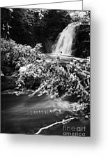 the river at the Gleno or Glenoe Waterfall beauty spot county antrim Greeting Card by Joe Fox