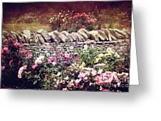The Rose Garden Greeting Card by Stephanie Frey