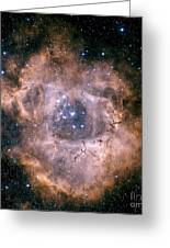 The Rosette Nebula Greeting Card by Charles Shahar