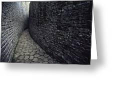 The Ruins Of Great Zimbabwe Were Built Greeting Card by James L. Stanfield