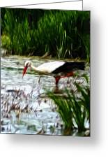 The Stork Greeting Card by Stefan Kuhn