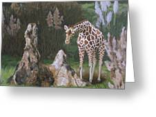 The Termite Mounds Greeting Card by Sandra Chase