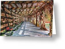 The Trellis Pathway In Winter Greeting Card by Dan Stone