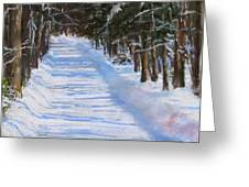 The Valley Road Greeting Card by Jack Skinner