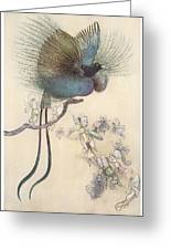 The Water Babies The Most Beuatiful Bird Of Paradise Greeting Card by Warwick Goble