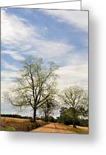 The Way There Greeting Card by Jan Amiss Photography