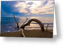 The wooden arch Greeting Card by Marco Busoni