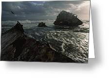 The Wreck Of The Thomas T. Tucker Greeting Card by James L. Stanfield