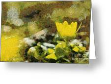 The Yellow Flower Greeting Card by Odon Czintos
