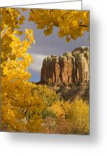 The Yellow Leaves Of Fall Frame A Rock Greeting Card by Ralph Lee Hopkins