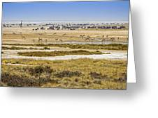 This Is Namibia No.  1 - Waterhole At Etosha Pan Greeting Card by Paul W Sharpe Aka Wizard of Wonders