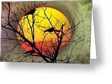 Three Blackbirds Greeting Card by Bill Cannon