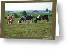Three Horses Greeting Card by Patricia Overmoyer