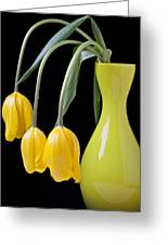 Three Yellow Tulips Greeting Card by Garry Gay