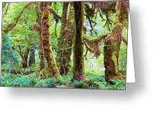 Through Moss Covered Trees Greeting Card by Heidi Smith