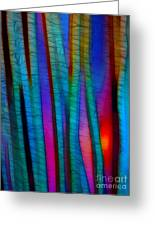 Through The Trees Greeting Card by Judi Bagwell