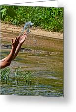 Throwing Water I Greeting Card by Debbie Portwood