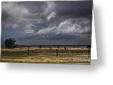 Thunder In The Distance Greeting Card by Dinah Anaya