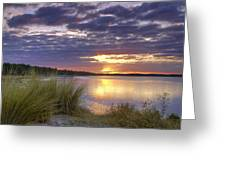 Tidal Estuary Greeting Card by Phill  Doherty