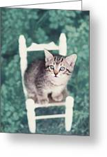 Time Out Greeting Card by Amy Tyler