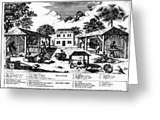 Tobacco Plantation, C1670 Greeting Card by Granger