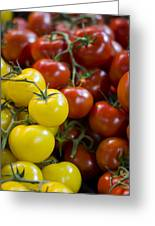 Tomatoes On The Vine Greeting Card by Heather Applegate