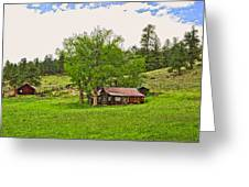 Tom's Old Cabin Greeting Card by James Steele