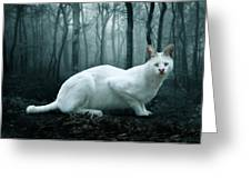 Tonga Greeting Card by Big Cat Rescue