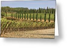 Toscana Greeting Card by Joana Kruse