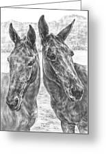 Trail Mates - Mule Portrait Art Print Greeting Card by Kelli Swan
