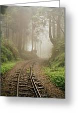 Train Tracks Found On The Forest Floor Greeting Card by Justin Guariglia