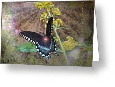 Transformation Greeting Card by Patricia Griffin Brett