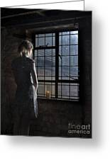 Trapped - Colour Greeting Card by Steev Stamford