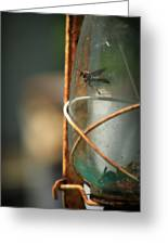 Trapped Greeting Card by Mandy Shupp