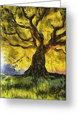 Tree  A La Van Gogh Greeting Card by Gun Legler