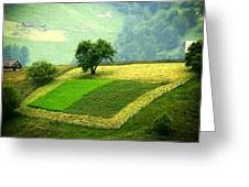 Tree And Field Greeting Card by Emanuel Tanjala