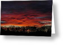 Tree Line Sunset Greeting Card by Peter  McIntosh